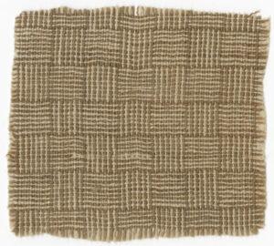 Fragment of homespun fabric, ca. 1864. Lena Dancy Ledbetter Papers. di_09889